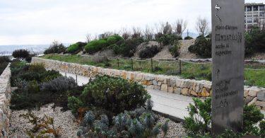 jardinmigrations4
