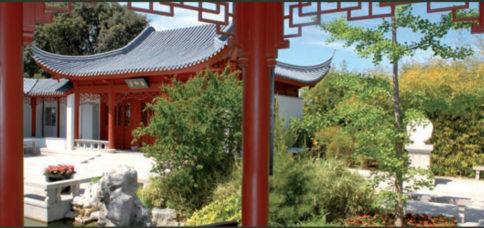 Découverte du Jardin Chinois au Jardin Botanique