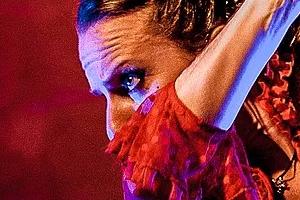 Stage flamenco, Flamenco Azul, Marseille