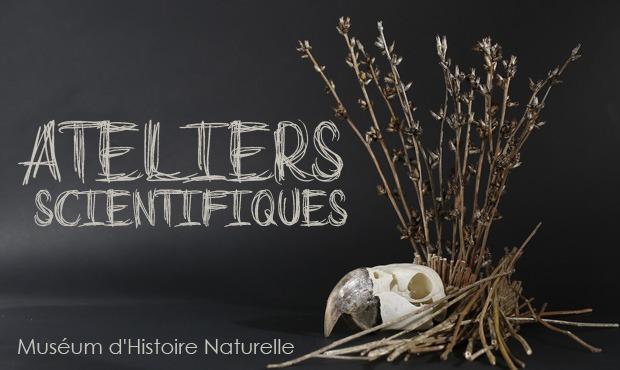Muséum d'Histoire Naturelle d'Aix en Provence, pendant les vacances
