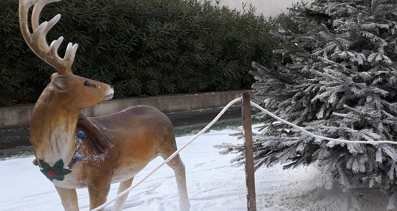 Animations de Noël dans le 7ème